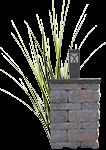 column_grass-icon