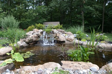 Ponds, Waterfalls & Fountains