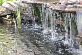 Natural Setting Waterfall